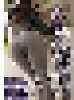 umd-772 커버 사진